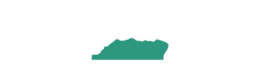 Vizmaraqua Logo