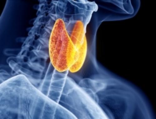 ¿De qué manera puede el agua de mar beneficiar a mi tiroides?